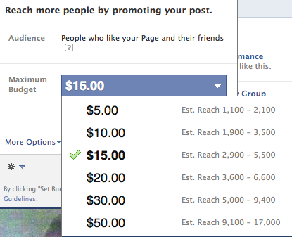 Facebook Promoted Post Options
